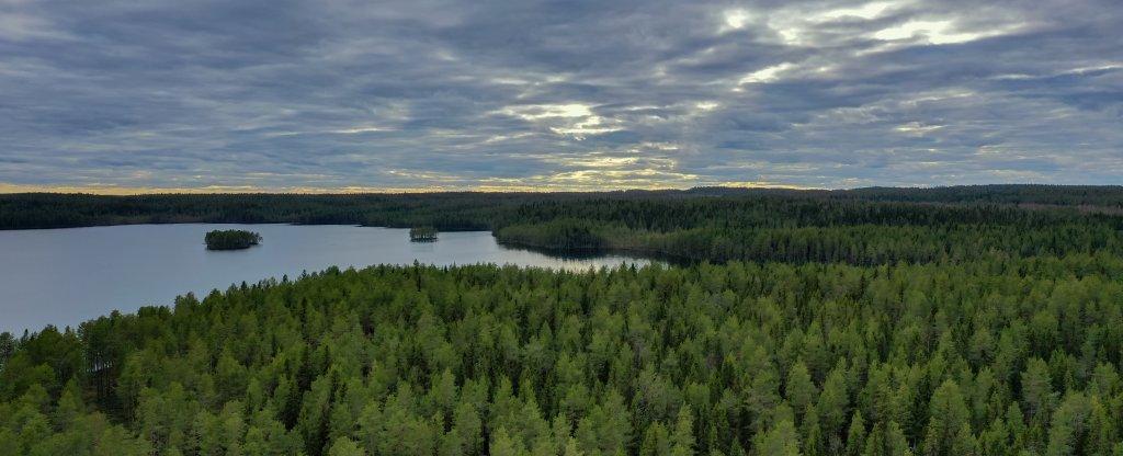 Край лесов и озер, Костомукша - Фото с квадрокоптера