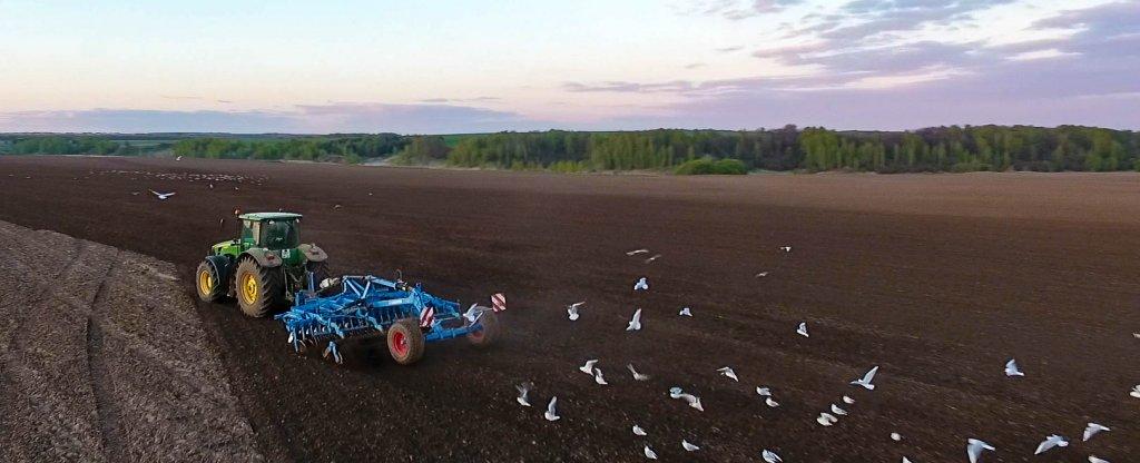 Сельскохозяйственные работы, Богородск - Фото с квадрокоптера