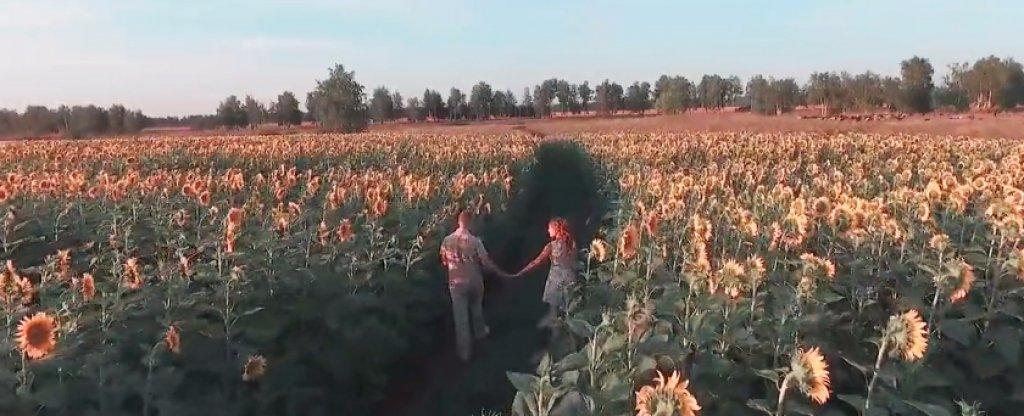 Предсвадебный клип Love Story, Тамбов - Фото с квадрокоптера
