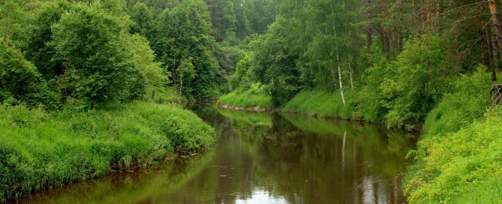 Река Меза,  - Фото с квадрокоптера